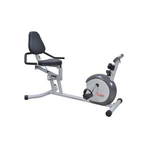Sunny Health and Fitness SF-RB4601 Recumbent Bike Review