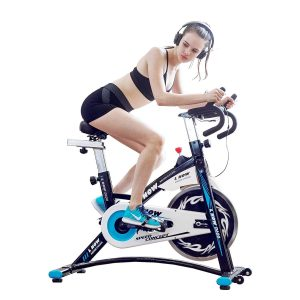 L NOW Indoor Cycling Bike Smooth Belt Driven (Model D600) Review