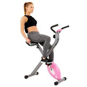 Sunny Health & Fitness Magnetic Folding Recumbent Bike SF-BR1117 Revie