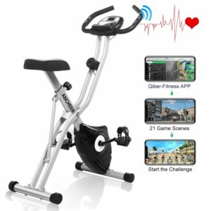 ANCHEER Folding Magnetic Resistance Bike with 10 adjustable Levels