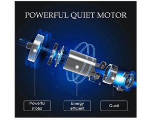 Pinty 2000W Whole Body Vibration Platform Exercise Machine's motor