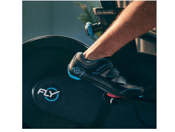 The Drive of the Flywheel Home Exercise Bike