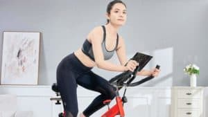 Pooboo L NOW Indoor Cycling Bike D760 Review