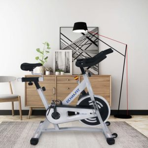 The ECHANFIT Magnetic Indoor Exercise Cycling Bike (CBK 1902) in a room