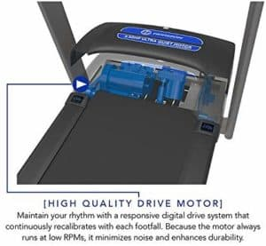 Motor of the Horizon T101 Treadmill (2018)