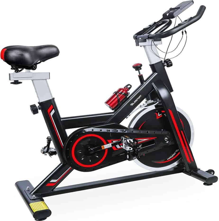 TELESPORT Indoor Cycling Bike
